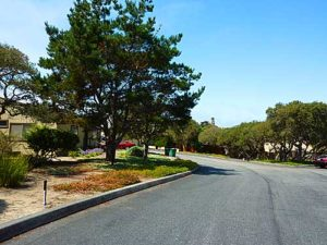 Carmel Townhouses, Marina, CA