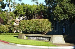Forest Grove Condo Sales