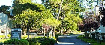 Forest Grove Condo Sales