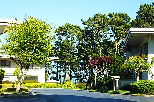 Skyline Crest Condo for Sale in Monterey, CA