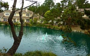The Glen Condos - Lake with waterfall and fountains