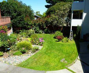 The Town House Condos - Garden Area